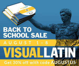 visual latin sale