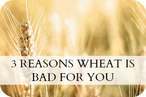 3 Reasons Wheat are Bad for You
