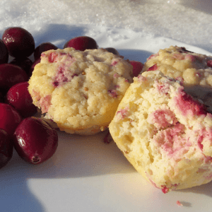 Coconut Flour Cranberry Lemon Muffins (grain-free & sugar-free)