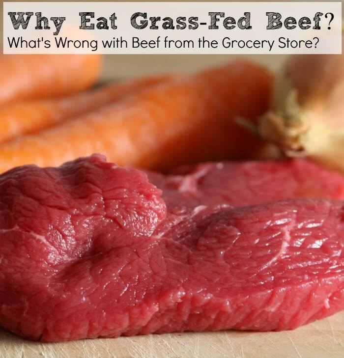 Why Eat Grass-Fed Beef (or, What's Wrong with Beef from the Grocery Store)