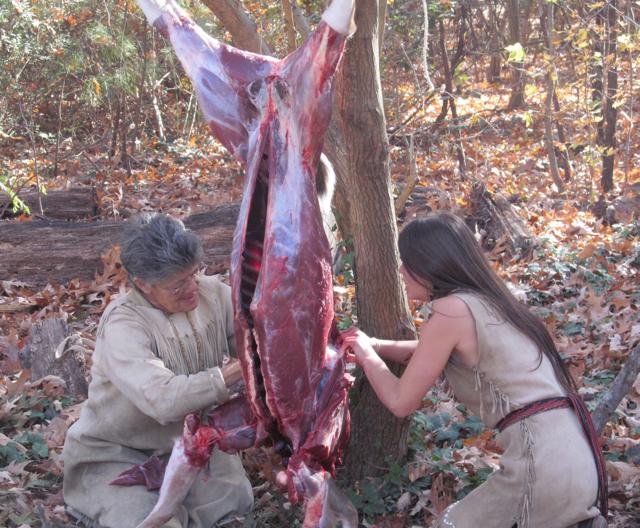 Deer preparation in Jamestown