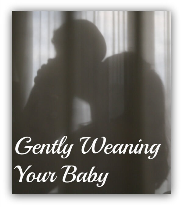 Gently Weaning Your Baby