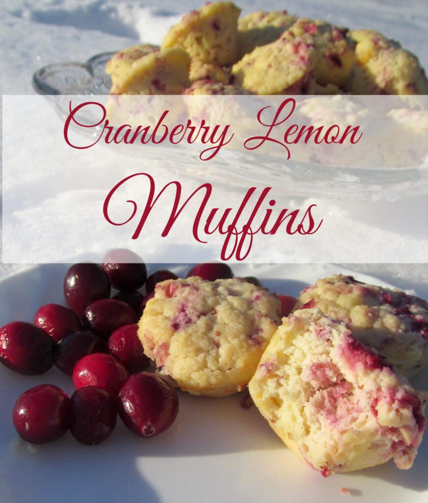 Cranberry Lemon Muffins Muffins. Made with coconut flour. Grain-free and Sugar-free too! Yummy :)