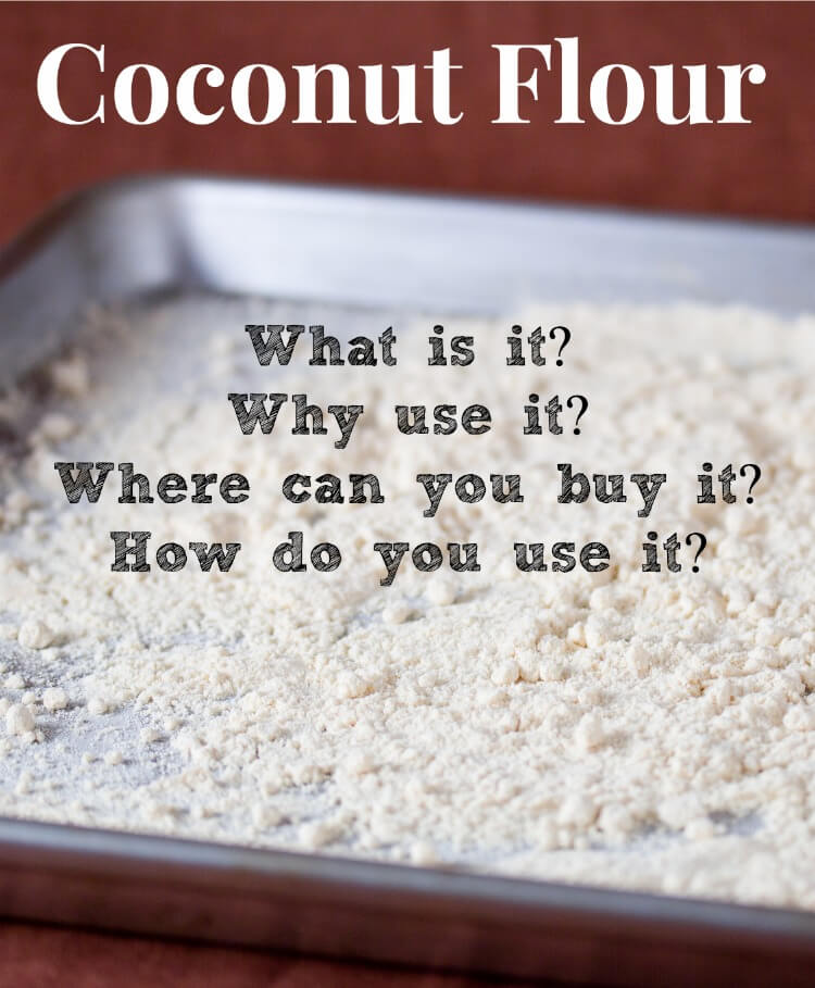 A Beginners Guide to Coconut Flour